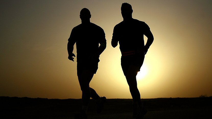 dieta białkowa a sport